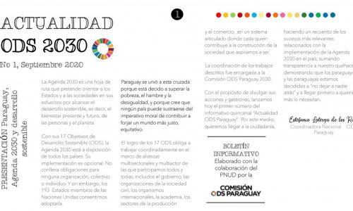 Boletín Informativo N°1, Septiembre 2020