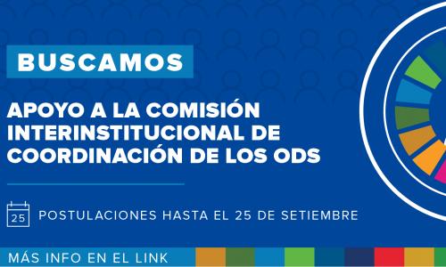 Consultoría de Apoyo a la Comisión ODS Paraguay