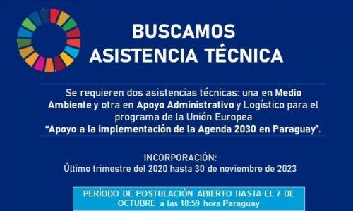 Asistencia Técnica «Apoyo a la Implementación de la Agenda 2030»