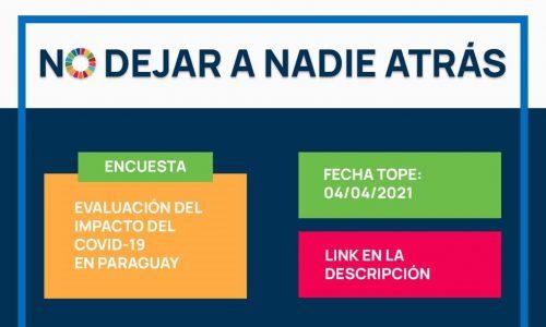 Encuesta: Evaluación del Impacto del COVID-19 en Paraguay