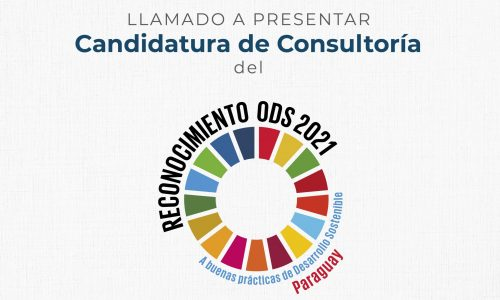 Llamado a Consultoría: Reconocimiento ODS 2021
