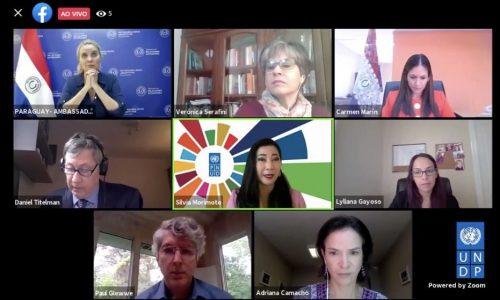 El caso del Sistema de Protección Social en Paraguay